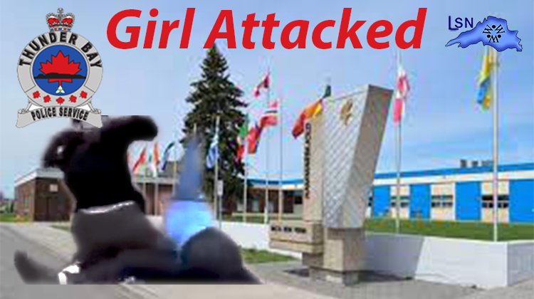 Facebook takes down Video of Girl attacked on Clarkson Street