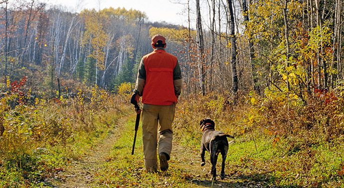 Support for public hunting land   Lake Superior News
